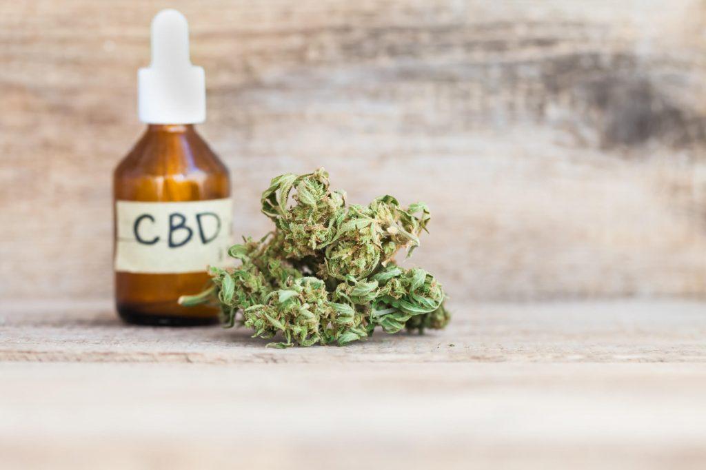 CBD extracts