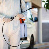 What Entails a Pest Control Treatment?